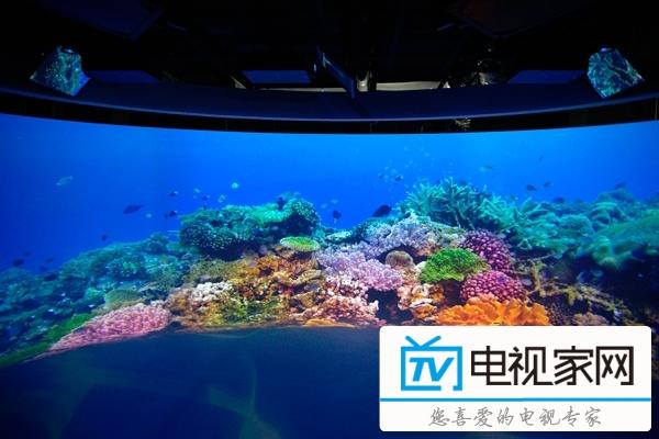 索尼探梦科技馆 开启8K海底水下世界图片